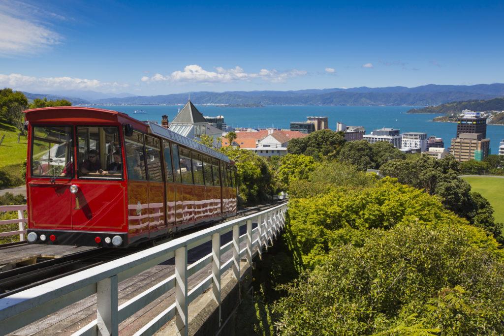 Wellington's Startup Ecosystem Report