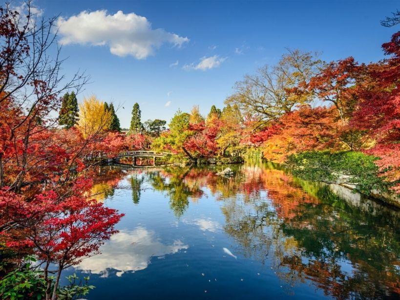 Kyoto Startup Ecosystem